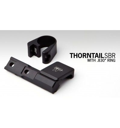 Haley Strategic | Thorntail SBR Light Mount